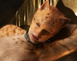 Cats : trailer et moqueries