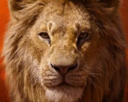 Le Roi Lion : des posters plus vrais que nature !